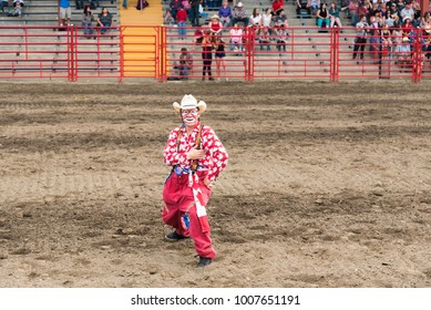 Williams Lake, British Columbia/Canada - July 1, 2016: a rodeo clown entertains the crowds during the 90th Williams Lake Stampede, one the the largest stampedes in North America