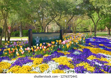 WILLIAMSBURG, VIRGINIA/USA - APRIL 22, 2018:  The college of William and Mary, located in Williamsburg, Virginia, is the second oldest university in the United States.