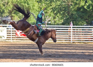WILLITS, CA - JULY 4: Another rodeo rider trying to stay on a twisting horse at the Willits Frontier Days, California's oldest continuous rodeo, held July 4, 2011 in Willits, CA.