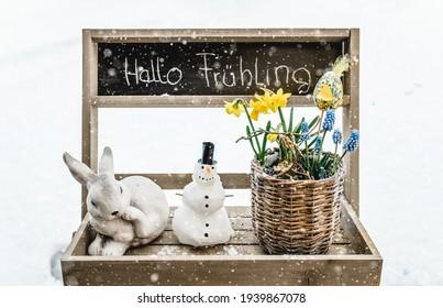 Frühling Willkommen Schnee Frühlingsboten Osterhase - Shutterstock ID 1939867078