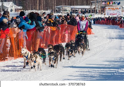 Willow, AK, USA March 7, 2010: A female musher's sled dog team runs the 2010 Iditarod out of the starting chute in Willow