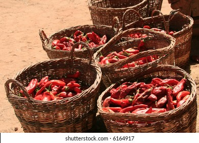 """Willow baskets filled with a harvest of red chile (with an """"e"""") peppers (Capsicum annuum)"""