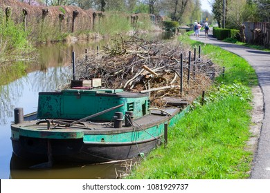 Willow branches on a pontoon in Reeuwijk in the Netherlands