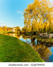 A willow tree reflected in the River Stour on the western edge of Sudbury, Suffolk