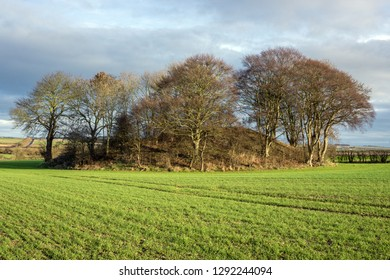 Willy Howe, Iron Age Burial Mound, Wold Newton, East Yorkshire UK