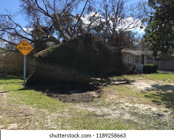 Wilmington, NC - USA / September 26, 2018. The aftermath of Hurricane Florence sees trees on rooftops all over New Hanover County. House and fence destroyed by storm winds and fallen tree