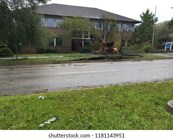 Wilmington North Carolina - USA / September 16, 2018. The continued aftermath of Hurricane Florence on downtown. Local law office entry blocked by downed tree