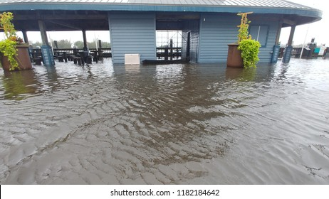 Wilmington, North Carolina / USA - September 15, 2018. Water rises and a log floats in front of the Visitors Center in downtown. Part of the continued floods from Hurricane Florences aftermath