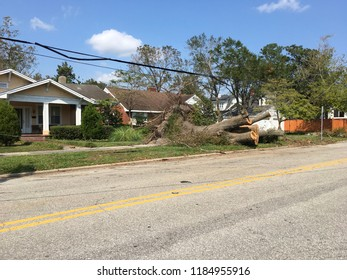 Wilmington, North Carolina / USA - September 20, 2018. As the skies clear, more cut timber and piles of debris line this city streets in the aftermath of hurricane Florence