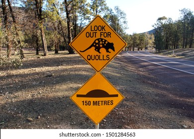 Wilpena Pound, South Australia, Australia, August 27, 2019. Quoll Traffic Sign by the Side of a Road in the Flinders Ranges