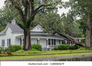 WILSON, NC - SEPTEMBER 15: A fallen tree from the winds of Hurricane Florence collapsed the roof on a home in Wilson County, NC. (Photo by William Howard)