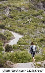 Wilsons Promontory Australia November 5th 2018 : Hiking the 3 bays trail at Wilsons Promontory national park in Victoria, Australia