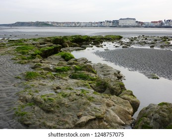 Wimereux, France - April 29, 2010 : the town of Wimereux on the Opal Coast in the North of France, seen from the beach at low tide with green algae in the foreground