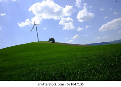 Wind blades in the countryside