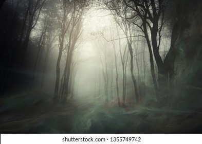 wind blowing magical dust in mysterious dark forest, fantasy background