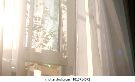 wind blows through the open window in the room. Waving white tulle near the window. Morning sun lighting the room, shadow background overlays. - Shutterstock ID 1818714392
