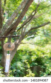 Wind chimes swaying between trees