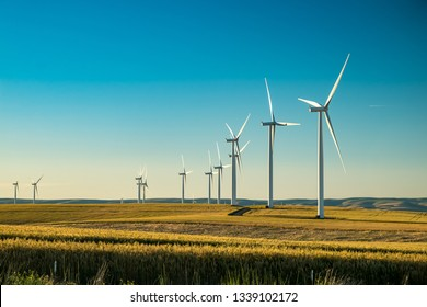 Wind electricity generator in summer fields