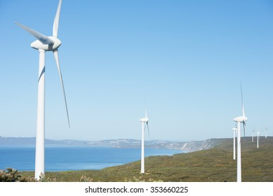 Wind farm along coast of Southern Ocean in Western Australia, producing renewable clean energy to town of Albany, summer sunny blue sky, copy space.