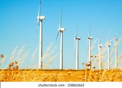 Wind farm at farmland in summer