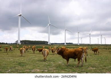 Wind farm. Modern windmills or wind turbines in the countryside landscape. Electricity is powered ecological and considered better for the environment over oil and other fossil fuels.