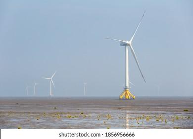 wind farm on tidal flat wetland, sustainable energy background