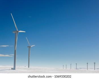 Wind Mills over the Prairie Hills of Alberta in Winter