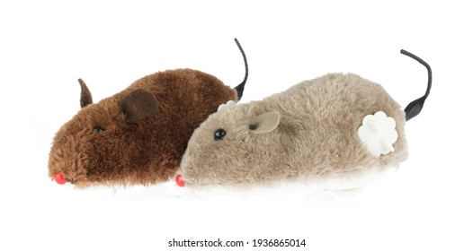 Wind Up Mouse Toy isolated on white background