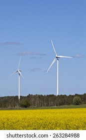 Wind power in the countryside and oilseed field