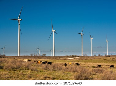 Wind power generators on a cattle ranch in northern Oklahoma.