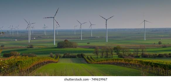 Wind power plant in the autumn vineyard