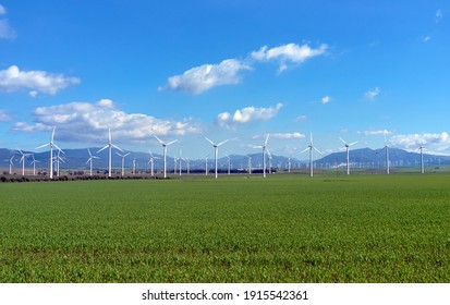 Wind power plant with turbines on a green field with blue sky in a beautiful bright day. Ecology technology and renewable energy concept. Windmill energy transformation. Electric power production