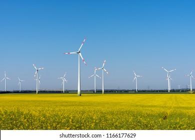 Wind power plants in a blooming rapeseed field seen in rural Germany