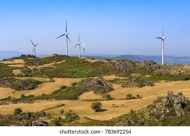 Wind power turbines farms in a green landscape