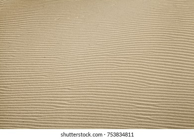 wind and sand pattern on the surface of a  dune revelaved by a low evening light