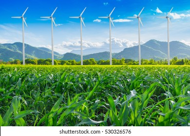 Wind Turbine for alternative energy in green corn field and mountain with blue sky. Eco power.