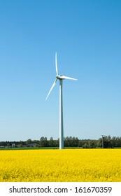 Wind turbine in the farmland