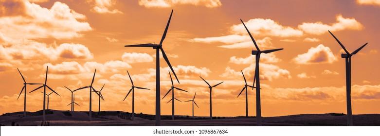 Wind turbine field at sunset, dramatic sky