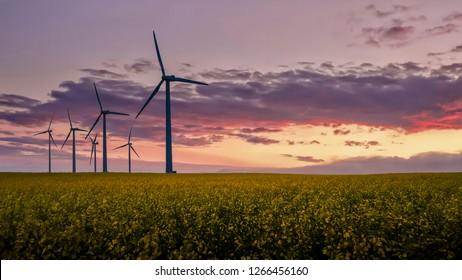 Wind turbine fields in Denmark