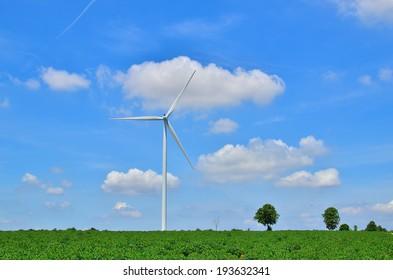 Wind Turbine in Green Fields