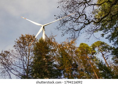 Wind turbine, trees, and sky