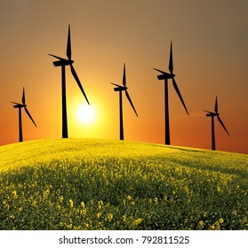 Wind turbines (alternative energy source.Concept: Renewable Energies