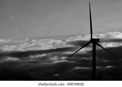 Wind turbines backlit at dawn, monochrome effect