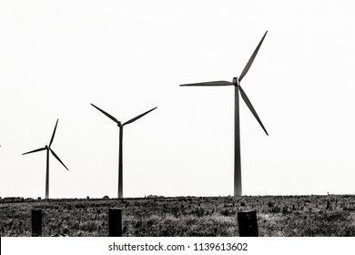 wind turbines in black and white