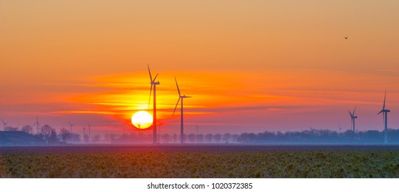 Wind turbines in a field at sunrise in winter
