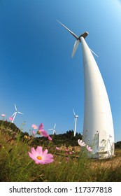 wind turbines generating electricity and flower with fish-eye view