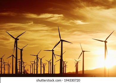 Wind turbines in golden sunset, Palm Springs, CA.