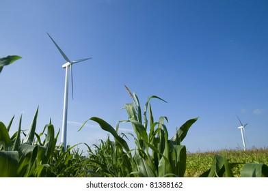 Wind turbines in a green field