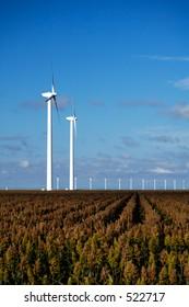 Wind turbines near White Deer, Texas.