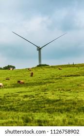 Wind turbines on Dartmoor National Park, Devon, United Kingdom